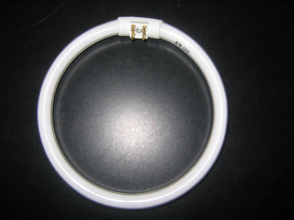 环形节能灯为什么有四个针脚